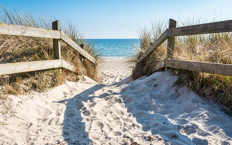 Beach, sand and grass