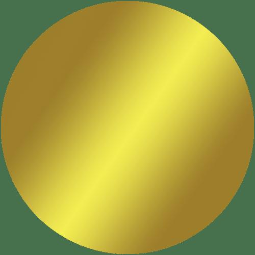Rostfritt guldspegel